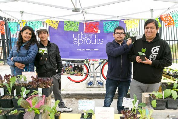 urban_sprouts