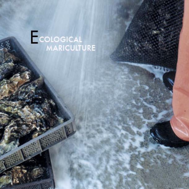 Ecological Mariculture