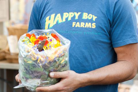 happy boy farms